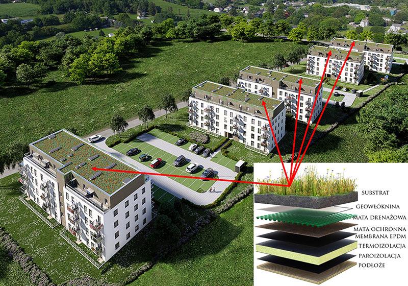 Zielone dachy na Osiedlu Łomianki